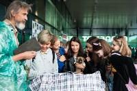 Благотворительный фестиваль помощи животным, Фото: 25