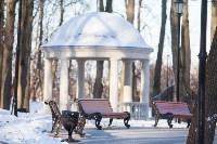 Морозное утро в Платоновском парке, Фото: 31
