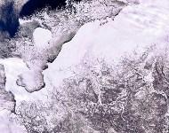 Ненецкий автономный округ и Печорское море, Фото: 15