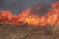 """Возгорание сухой травы напротив ТЦ """"Метро"""", 7.04.2014, Фото: 28"""