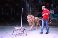 Новая программа в Тульском цирке «Нильские львы». 12 марта 2014, Фото: 16