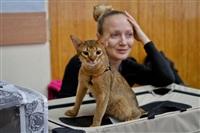 В Туле прошла международная выставка кошек «Зимнее конфетти», Фото: 9