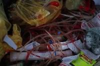В Туле сжигают медицинские отходы класса Б, Фото: 6