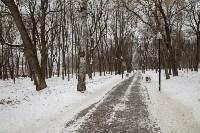 Рогожинский парк, зима 2019, Фото: 3