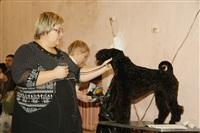 В Туле прошла всероссийская выставка собак, Фото: 31