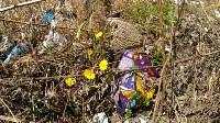 В Туле на берегу Тулицы обнаружен незаконный мусорный полигон, Фото: 3