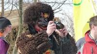 Туляки отпраздновали горнолыжный карнавал, Фото: 14