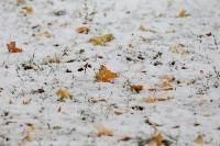 Первый снег в Туле, Фото: 16