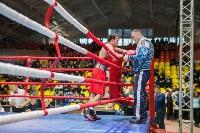 Гран-при Тулы по боксу-2017, Фото: 41