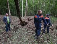 В лесу под Тулой поисковики нашли тайник с гранатами, Фото: 46