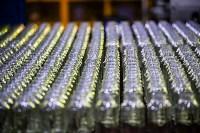 Стекольный завод в Алексине, Фото: 73