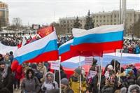 В Туле проходит митинг в поддержку Крыма, Фото: 16