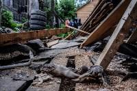 Плеханово, итоги дня: В таборе принудительно снесли первые 10 домов, Фото: 1