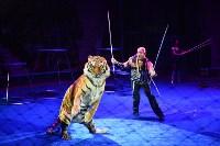 Цирковое шоу, Фото: 149