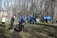 Посадка деревьев в Комсомольском парке, Фото: 33