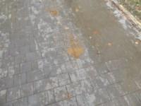 Улица Ложевая, Фото: 4