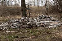 В лесу в Узловском районе обнаружена свалка ртутных ламп, Фото: 8