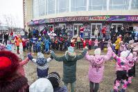 Широкая Масленица с Тульским цирком: проводы зимы прошли с аншлагом, Фото: 61