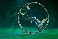 Цирковое шоу, Фото: 84