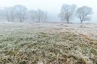 Ледяное утро в Центральном парке, Фото: 6