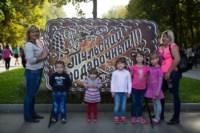 День города - 2014 в Центральном парке, Фото: 98