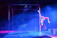 Цирковое шоу, Фото: 13