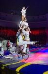 Тульский цирк, Фото: 46
