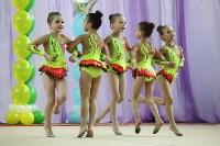 Соревнования «Первые шаги в художественной гимнастике», Фото: 63