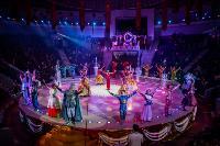 Шоу фонтанов «13 месяцев»: успей увидеть уникальную программу в Тульском цирке, Фото: 275
