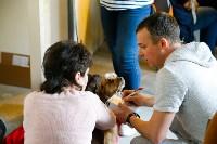 Выставка собак в Туле, Фото: 38