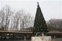 Ремонтные работы в ЦПКиО им. Белоусова, Фото: 61