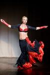 В Туле показали шоу восточных танцев, Фото: 26