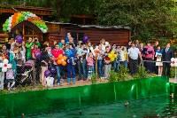 Запуск лебедей в верхний пруд Центрального парка Тулы, Фото: 16