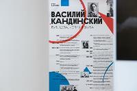 В Туле открылась выставка Кандинского «Цветозвуки», Фото: 10