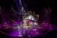 Шоу фонтанов «13 месяцев» в Тульском цирке – подарите себе и близким путевку в сказку!, Фото: 102