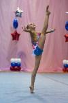 Соревнования по художественной гимнастике 31 марта-1 апреля 2016 года, Фото: 55