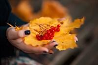 Золотая осень в Тульской области, Фото: 13