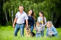 Овчарка вернулась домой через семь месяцев после пропажи, Фото: 5