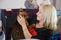 Выставка кошек в ГКЗ. 26 марта 2016 года, Фото: 57