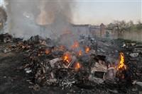В Туле сборщики металла травят город дымом, Фото: 7