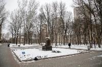 Рогожинский парк, зима 2019, Фото: 10