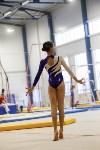 Спортивная гимнастика в Туле 3.12, Фото: 180