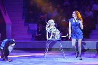 Цирковое шоу, Фото: 41