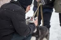 Яснополянская лыжня 2017, Фото: 33