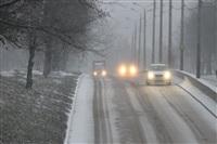 Снегопад в Туле, 28 ноября, Фото: 12