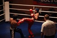 В Туле прошла матчевая встреча звезд кикбоксинга, Фото: 53