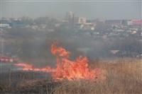 """Возгорание сухой травы напротив ТЦ """"Метро"""", 7.04.2014, Фото: 23"""