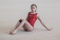 Первенство ЦФО по спортивной гимнастике, Фото: 56
