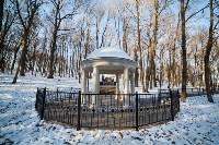 Морозное утро в Платоновском парке, Фото: 24