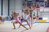 Тульские гимнастки готовятся к первенству России, Фото: 2